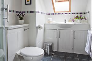 Wells Somerset Shower room